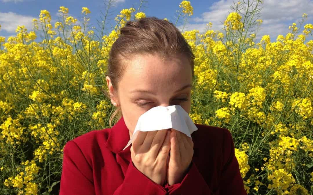 Allergies And Clean Air